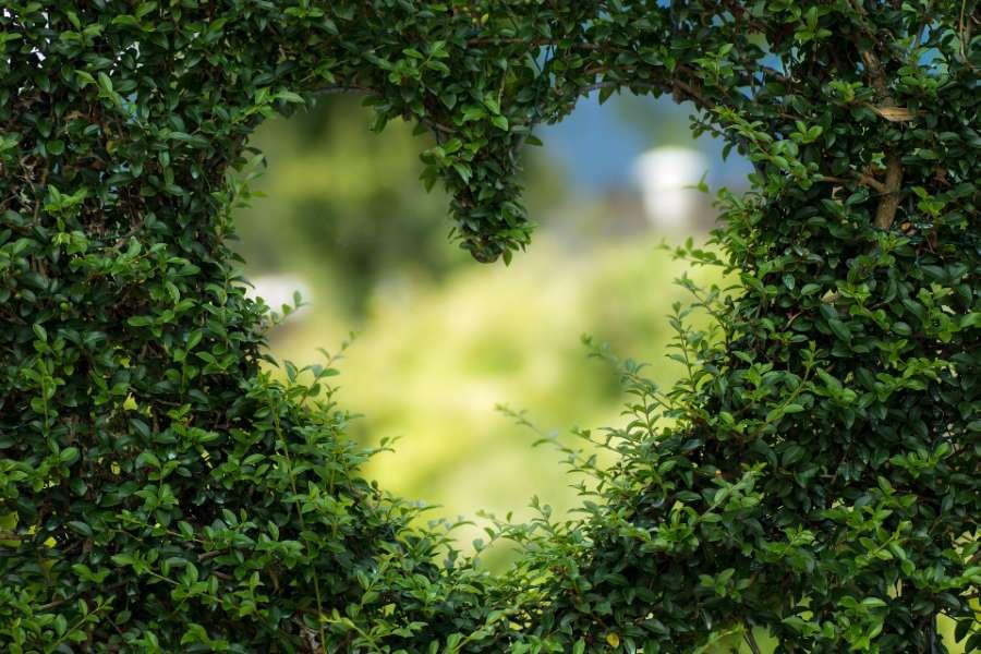 Garten – das neue Naturbewusstsein