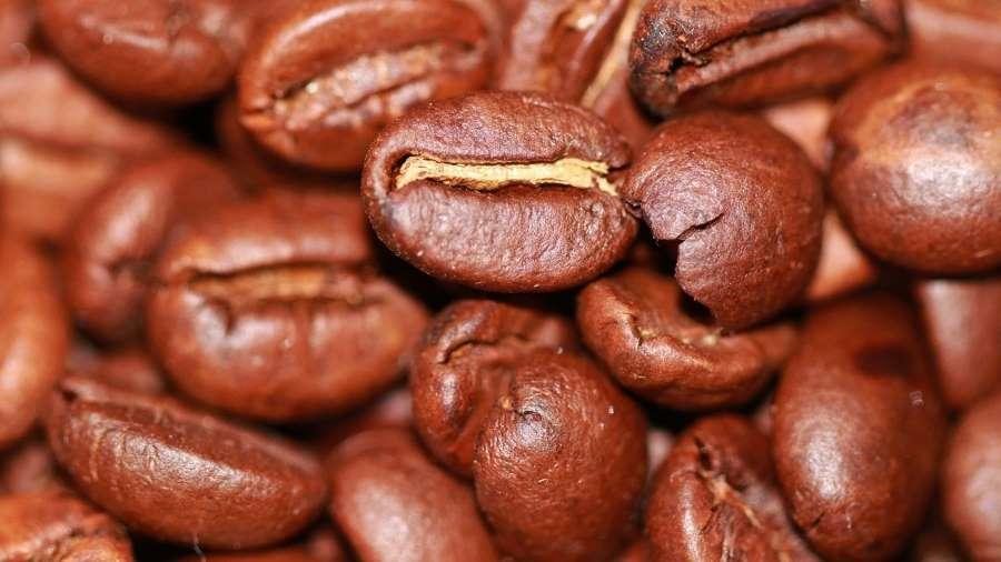 Kaffee – heilsames Lebenselixier