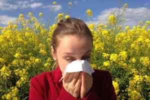 Allergie durch Pollen